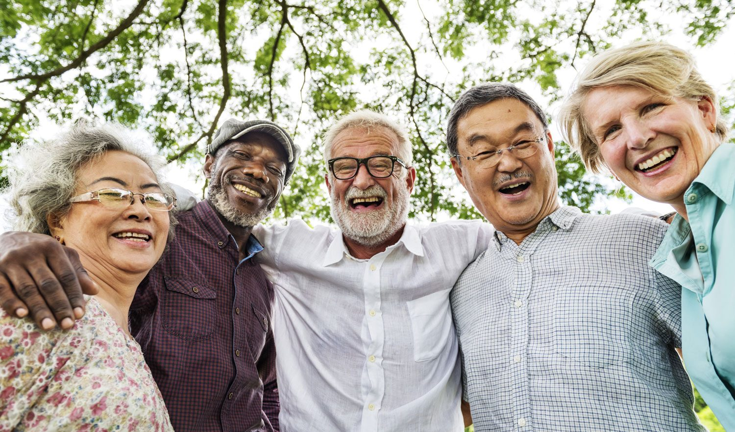 image of a group of Seniors