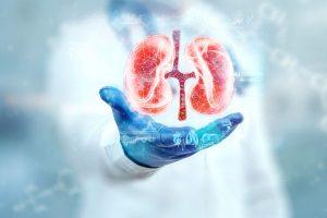 Hologram Kidney