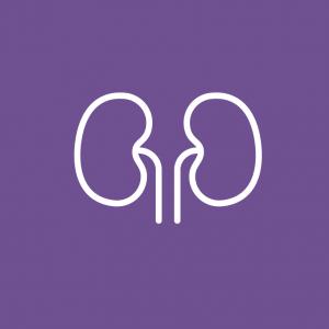 Nephrology_RGB